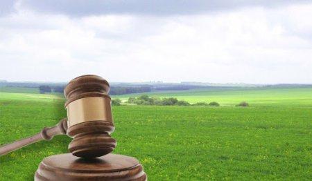 Перший земельний аукціон провели у Лип'янській громаді