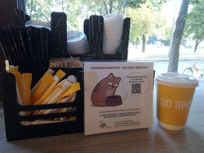 Унікальний благодійний проект до Міжнародного дня безпритульних тварин стартував у Черкасах