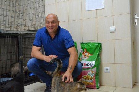 Черкаські благодійники ініціювали унікальну акцію на допомогу безпритульним тваринам