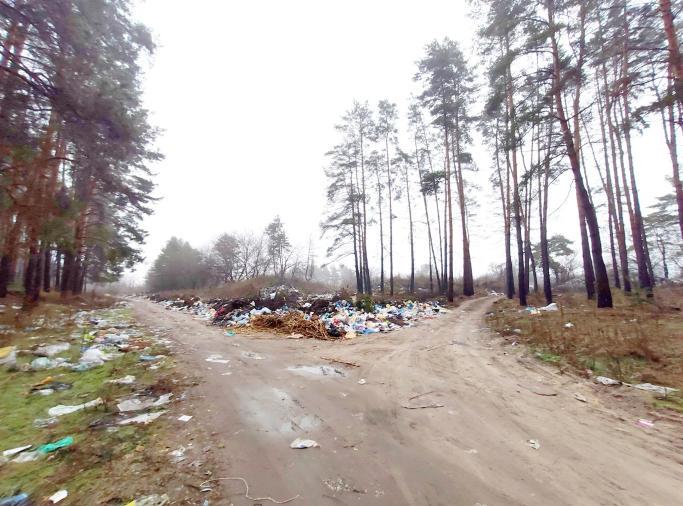 У Благодатному місцеві мешканці утворили стихійне сміттєзвлище (фото)