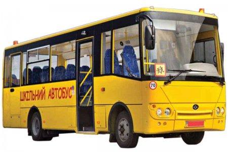 Лисянська громада планує придбання 2 шкільних автобусів, оновлення парку «Швидких допомог» та спорудження нової свердловини