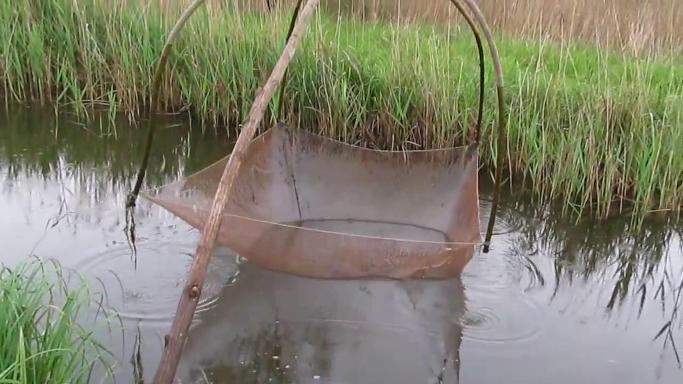 У Городищі чоловіки займалися незаконним рибним добувним промислом