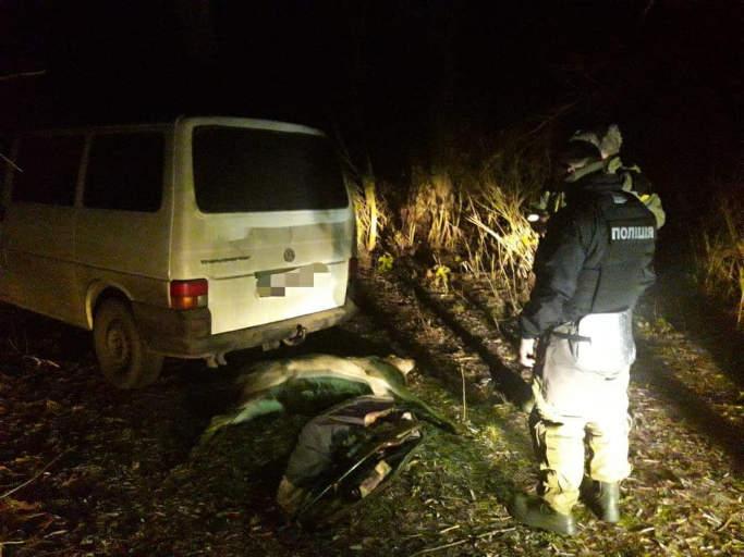 За рішенням суду канівчанин сплатить збитки за вбитого оленя