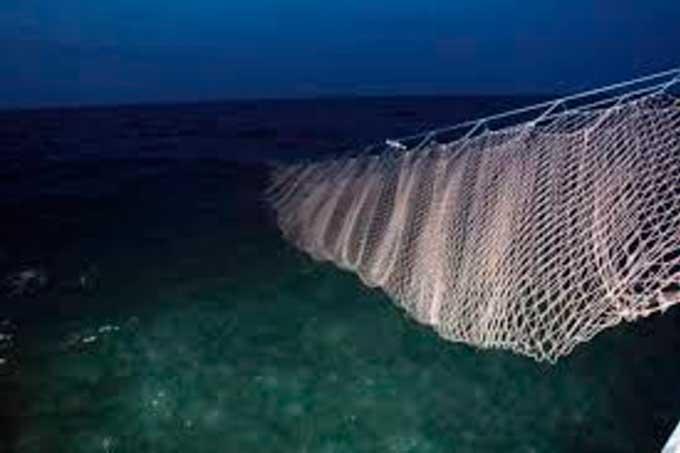 Держекоінспекція посилює боротьбу проти рибного браконьєрства