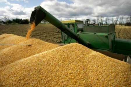У Черкаській області найвища урожайність зерна